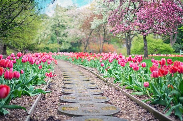 cesta zahradou